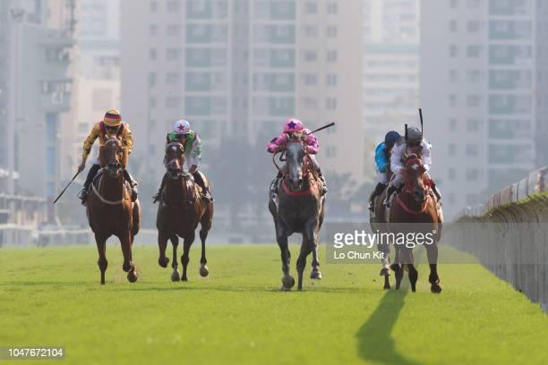 Jockey Karis Teetan riding Hot King Prawn wins Race 7 The National Day Cup at Sha Tin racecourse on October 1 2018 in Hong Kong