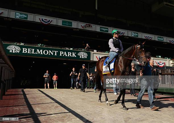 Jockey Kent Desormeaux rides Exaggerator onto the track before a training session prior to the 148th running of the Belmont Stakes at Belmont Park on...