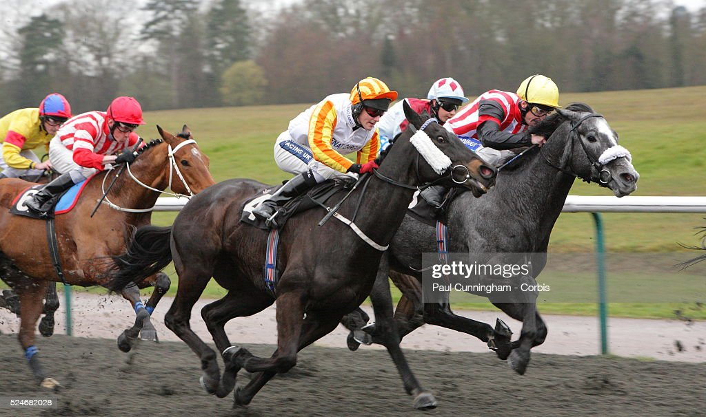 Horse Racing - Lingfield Park - March 30 : News Photo