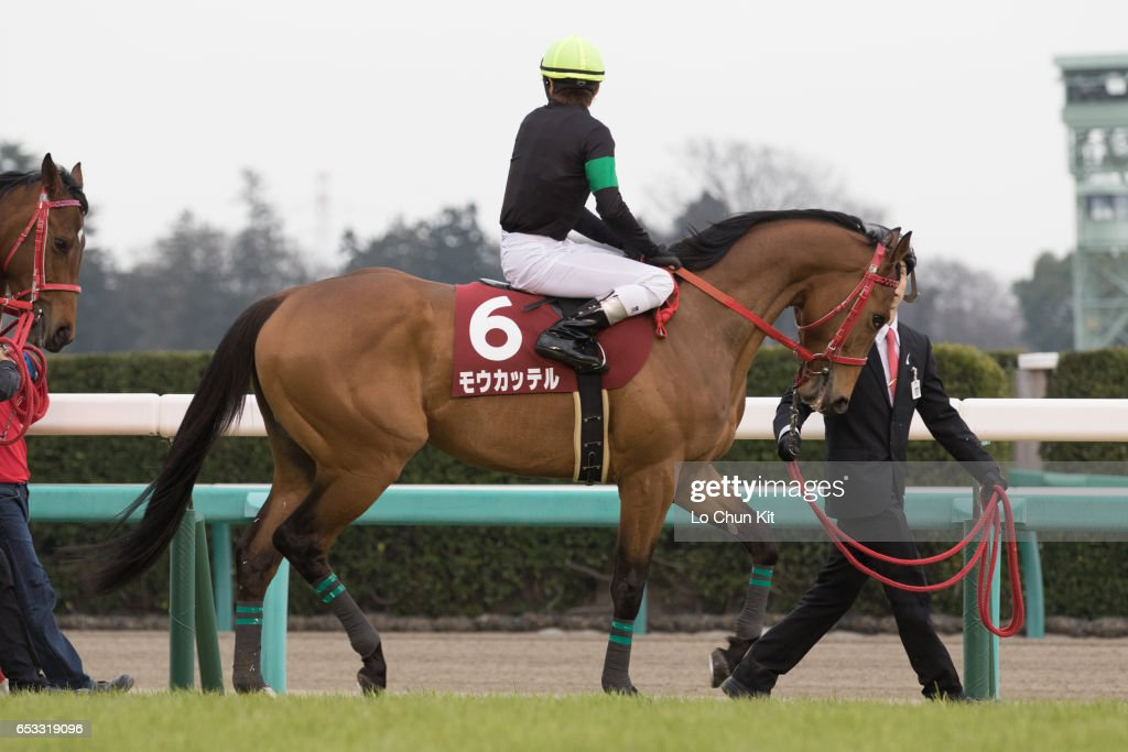 Jockey Kosei Miura riding Mo Katteru during the Race 11 Yayoi Sho - Japanese 2000 Guineas Trial (G2 2000m) at Nakayama Racecourse on March 6, 2016 in Funabashi, Chiba, Japan.