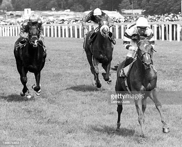 Jockey Lester Piggott wins the Gold Cup at Ascot on Sagaro with Mistigri in second place and Le Bavard in third 19th June 1975