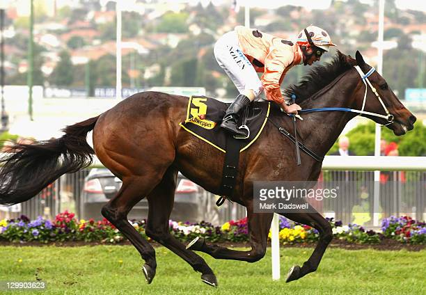 Jockey Luke Nolen riding Black Caviar wins Race 4 the Schweppes Stakes during Cox Plate Day at Moonee Valley Racecourse on October 22 2011 in...