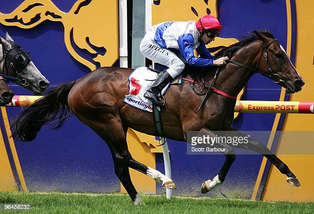 Jockey Mark Pegus riding Bolle crosses the line to win the Selangor Turf Club Handicap during the CF Orr Stakes Day meeting at Caulfield Racecourse...