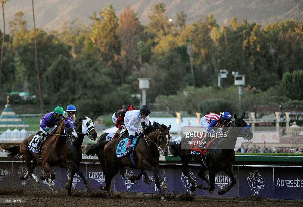 2014 Breeders' Cup Classic : News Photo