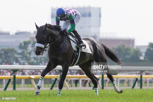 Jockey Masayoshi Ebina riding Hiraboku Deep during the Tokyo Yushun at Tokyo Racecourse on May 26 2013 in Tokyo Japan Tokyo Yushun Japanese Derby is...