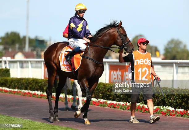 Jockey Michael Dee parades Alabama Express after winning race 8 the Neds CF Orr Stakes during Melbourne Racing at Caulfield Racecourse on February 08...