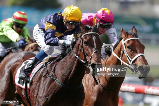 Jockey Michael Dee riding Tofane to win Race 4 PFD Food Services Handicap during Melbourne Racing at Moonee Valley Racecourse on September 07 2019 in...