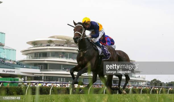 Jockey Michael Dee riding Viscosity wins Race 4 Donate to Equine Bushfire Relief during Melbourne Racing at Flemington Racecourse on January 18 2020...