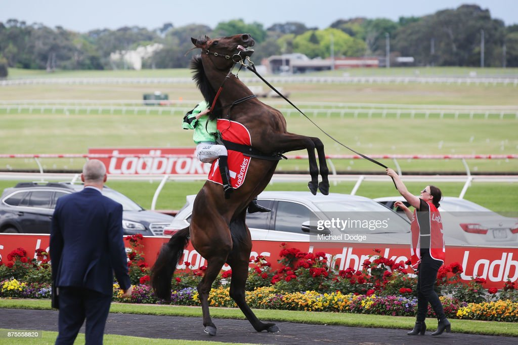 Melbourne Racing : News Photo