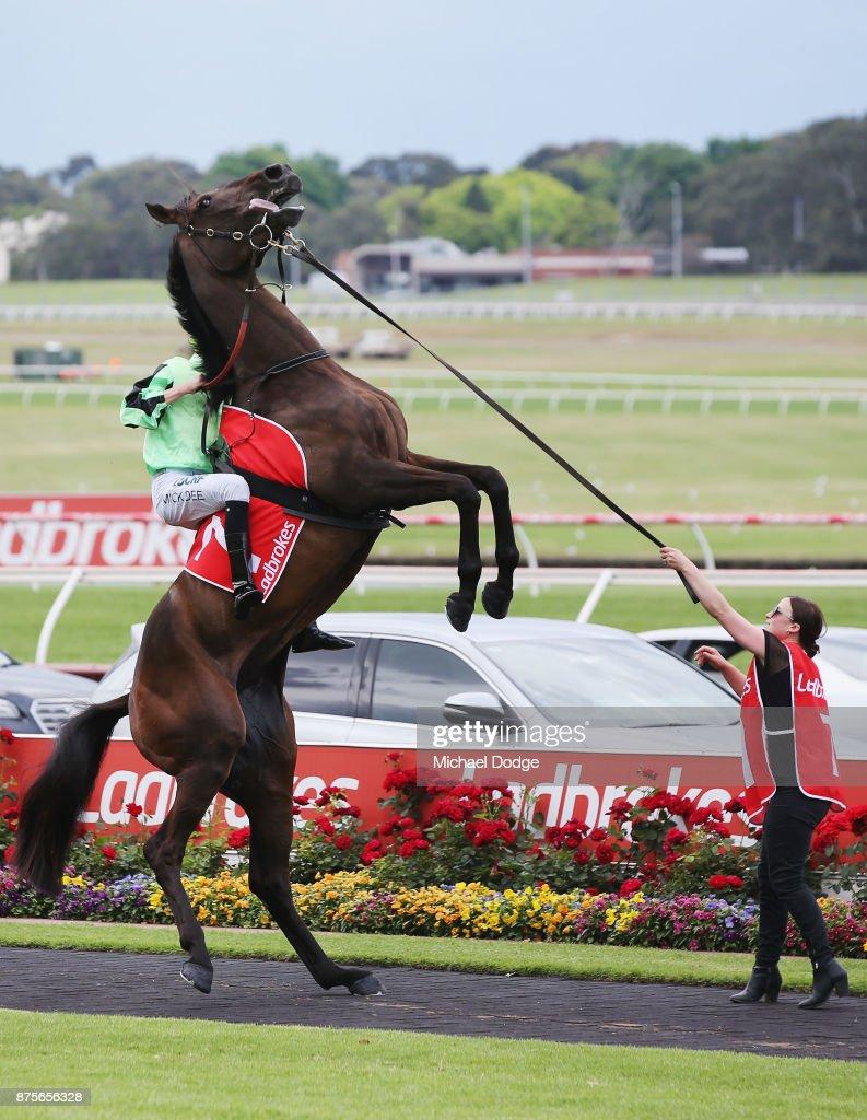 Melbourne Racing : News Photo
