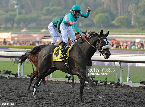 Jockey Mike Smith celebrates after winning the five milliondollar Breeders' Cup Classic race on the horse Zenyatta owned by Jerome S Moss during the...