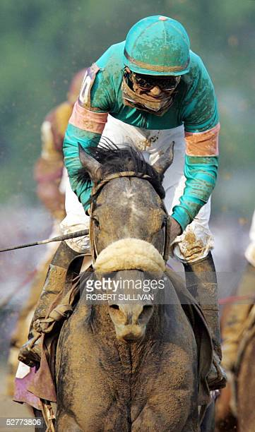 Jockey Mike Smith leads Giacomo to victory in the 131st Kentucky Derby 07 May 2005 at Churchill Downs in Louisville KY Giacomo a 501 longshot won the...