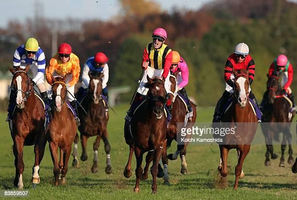 Jockey Mirco Demuro riding Screen Hero leads across the line to win the Japan Cup 2008 at Tokyo Racecourse on November 30, 2008 in Tokyo, Japan.