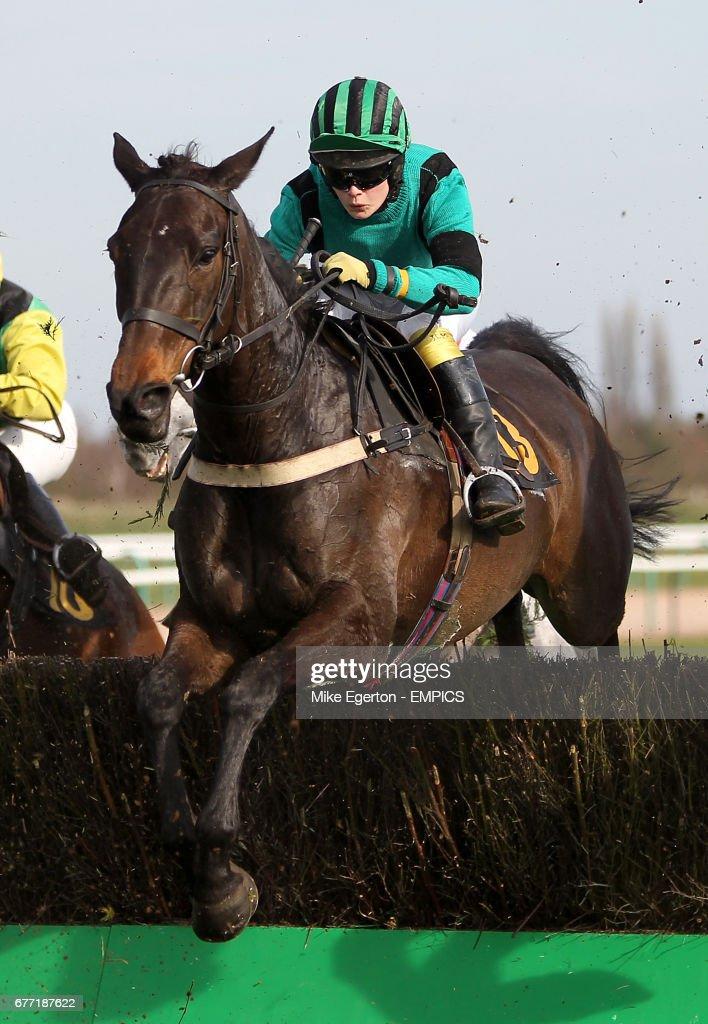 Jockey Miss Joanna Mason on Poppy Day jumps in the Betting Secrets