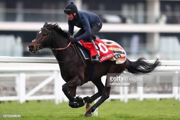 Jockey Ned Curtis riding Altior during gallops ahead of the Ladbrokes Winter Carnival meeting at Newbury Racecourse on November 20 2018 in Newbury...