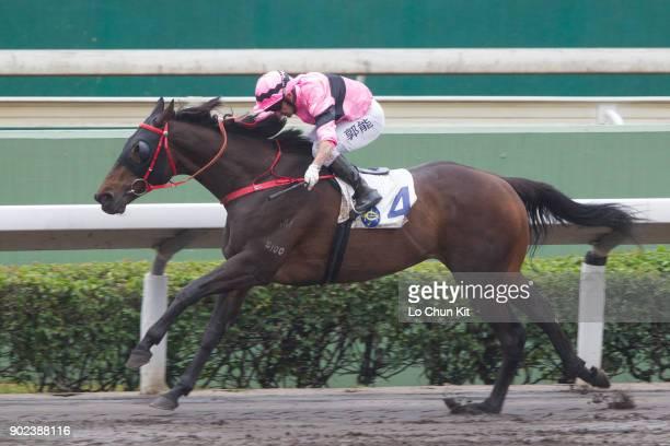 Jockey Neil Callan riding Sempiternal wins Race 2 Cineraria Handicap at Sha Tin racecourse on January 7 2018 in Hong Kong Hong Kong