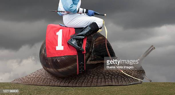 Jockey on a snail