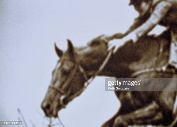 jockey on race horse - steeplechasing horse racing stock photos and pictures
