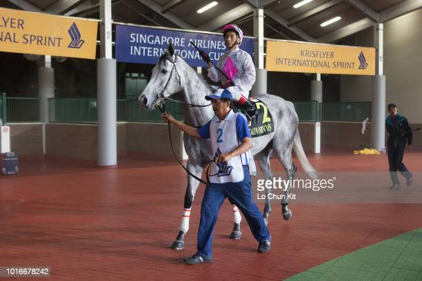 Jockey Oscar Chavez riding Captain Obvious during Krisflyer International Sprint on May 20 2012 in Singapore