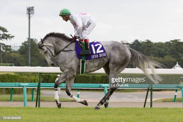 Jockey Oscar Chavez riding Captain Obvious during the Race 11 Sprinters Stakes at Nakayama Racecourse on September 30 2012 in Funabashi Chiba Japan