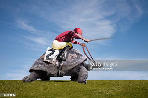 Jockey over a turtle