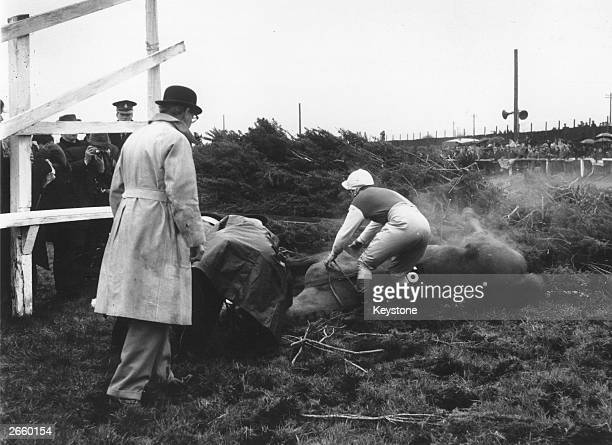Jockey Pat Buckley bending over his horse after falling at the infamous Grand National fence Becher's Brook at Aintree Liverpool