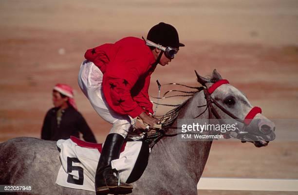 jockey rides arabian horse - racing silks stock pictures, royalty-free photos & images
