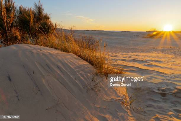 jockey ridge dune sunset - outer banks stock pictures, royalty-free photos & images