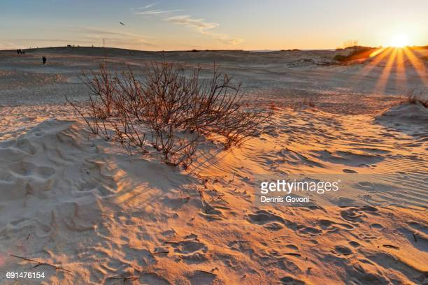jockey ridge dunes - outer banks stock pictures, royalty-free photos & images