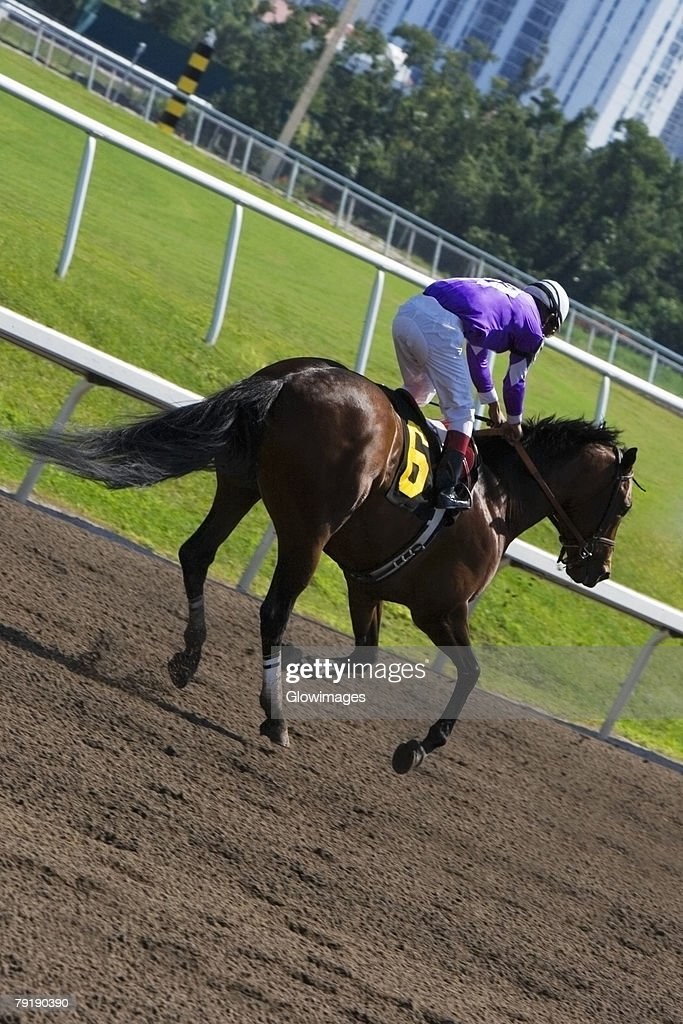 Jockey riding a horse in a horse race : Foto de stock
