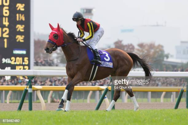 Jockey Ryan Moore riding Gentildonna during the Japan Cup at Tokyo Racecourse on November 30, 2014.