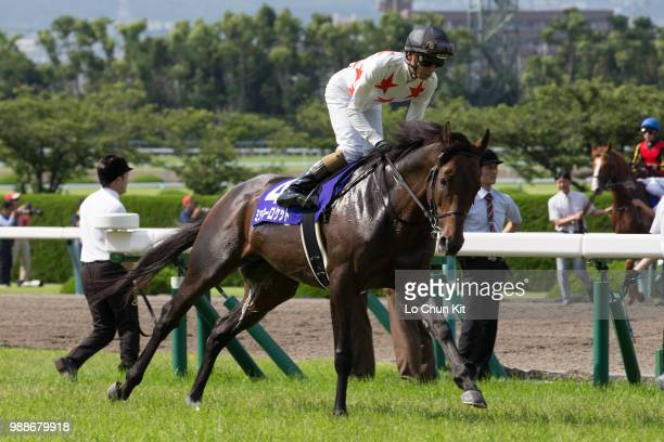 Jockey Ryuji Wada riding Mikki Rocket during the Takarazuka Kinen at Hanshin Racecourse on June 24 2018 in Takarazuka Japan