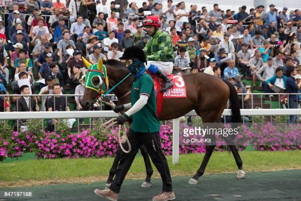 Jockey Sebastiano Guerrieri riding Zentenary during the Korea Sprint at Seoul Racecourse on September 10 2017 in Seoul South Korea