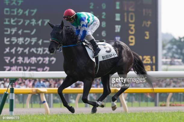 Jockey Shinji Fujita riding Meikei Pega Star during the Tokyo Yushun at Tokyo Racecourse on May 26 2013 in Tokyo Japan Tokyo Yushun Japanese Derby is...