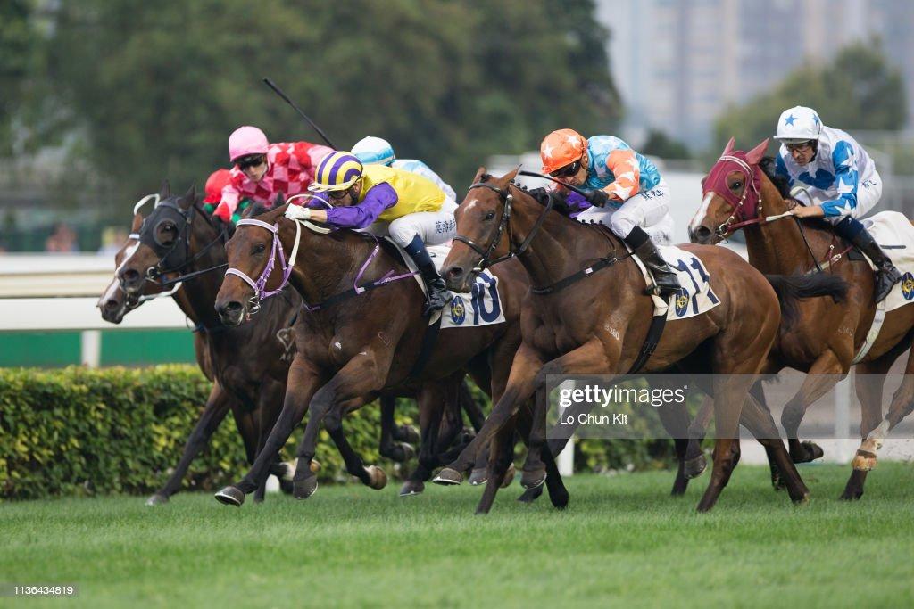 Horse Racing in Hong Kong - Sha Tin Racecourse : ニュース写真
