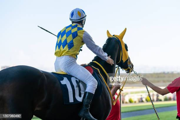 jockey sits on a horse - jockey stock pictures, royalty-free photos & images