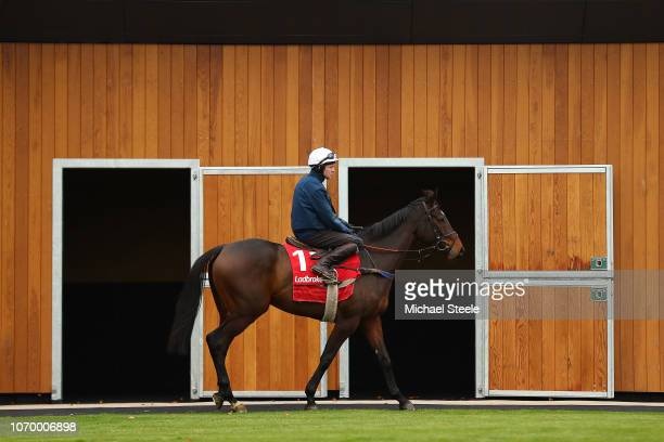 Jockey Stan Sheppard riding Thomas Patrick in the parade ring during gallops ahead of the Ladbrokes Winter Carnival meeting at Newbury Racecourse on...