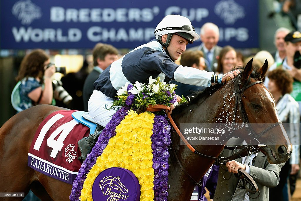 2014 Breeders' Cup Mile : News Photo
