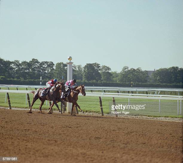 Jockey Steve Cauthen rides Affirmed as Jorge Velasquez tries to pull Alydar into first place during the Belmont Stakes on June 10 1978 at Belmont...