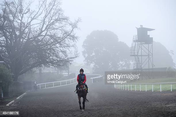 Jockey Steven Pateman walks back to stables in foggy conditions after a Caulfield track work session at Caulfield Racecourse on August 26 2014 in...