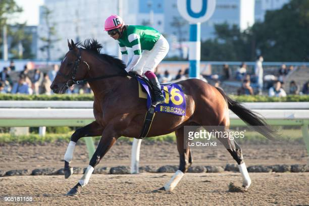 Jockey Tadanari Konno riding Maruka Bakken during the JBC Sprint at Ohi Racecourse in Tokyo Japan on November 3 2015