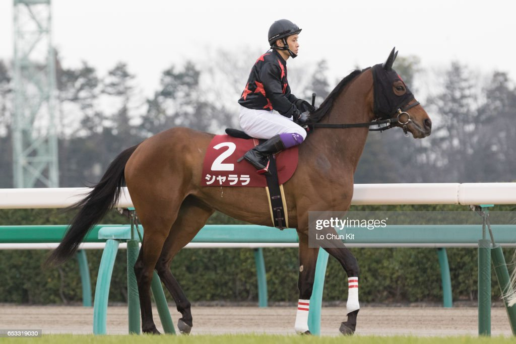 Jockey Teruo Eda riding Sha La La during the Race 11 Yayoi Sho - Japanese 2000 Guineas Trial (G2 2000m) at Nakayama Racecourse on March 6, 2016 in Funabashi, Chiba, Japan.