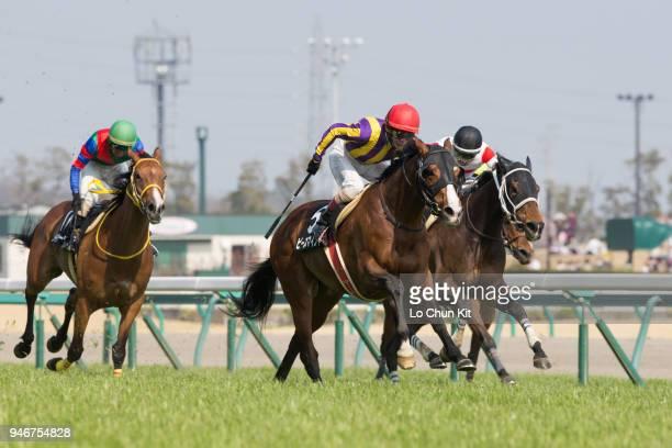 Jockey Tetsuya Kobayashi riding Peace Mind wins the Race 9 at Chukyo Racecourse on March 25 2018 in Toyoake Aichi Prefecture Japan