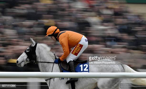 Jockey Tom Scudamore rides Zaynar to finish in 7th place in the Jewson Novices' Chase during the 2012 Cheltenham National Hunt Festival at Cheltenham...