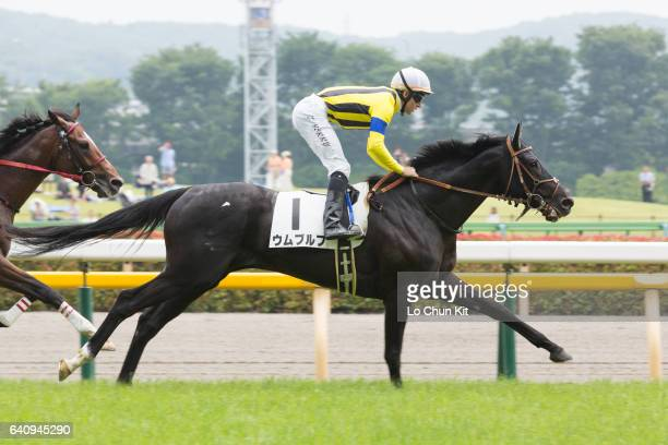 Jockey Tommy Berry riding Umbruch wins the Race 5 during the Japanese Derby weekend on May 28 2016 at Tokyo Racecourse in Tokyo Japan