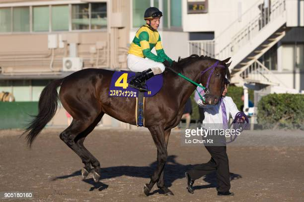 Jockey Tomonori Sato riding Cosmo Financier during the JBC Sprint at Ohi Racecourse in Tokyo Japan on November 3 2015