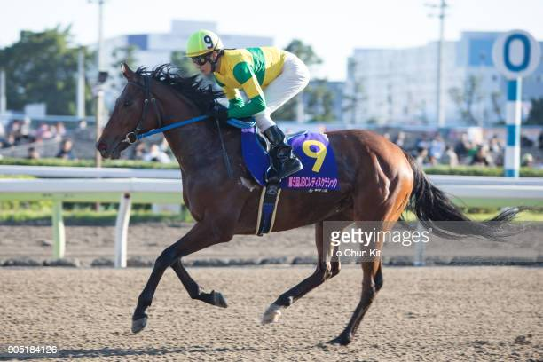 Jockey Tomonori Sato riding Touch Duel during the JBC Ladies' Classic at Ohi Racecourse in Tokyo Japan on November 3 2015
