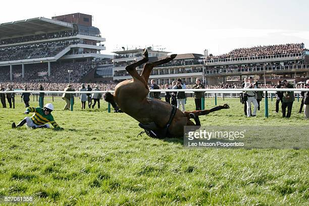Jockey Tony McCoy falls from his mount Risk Accessor in the Daily Telegraph Chase during the 2005 Cheltenham Festival at Cheltenham racecourse in...