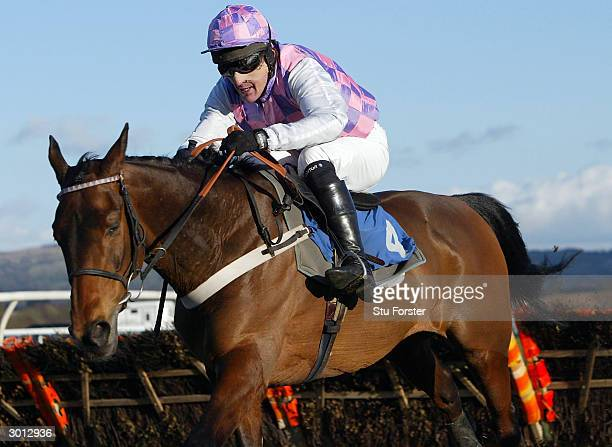 Jockey Tony McCoy rides Kentucky to victory on his comeback during The Arrow Handicap Hurdle Race at Ludlow racecourse on February 25 2004 in Ludlow...