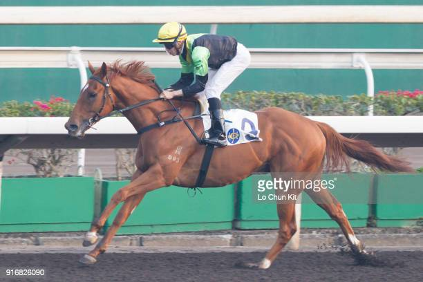 KONG FEBRUARY Jockey Vincent Ho Chakyiu riding Ugly Warrior wins Race 9 Waterloo Handicap at Sha Tin racecourse on February 10 2018 in Hong Kong Hong...